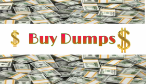 buy dumps, cc data, track1 track2 data with pin